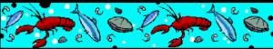 fishborder